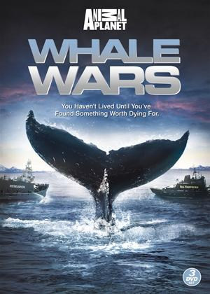 Whale Wars: Series 1 Online DVD Rental