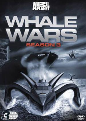 Whale Wars: Series 3 Online DVD Rental