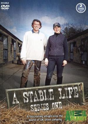 Rent A Stable Life: Series 1 Online DVD Rental