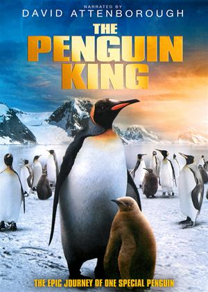 Rent The Penguin King Online DVD Rental