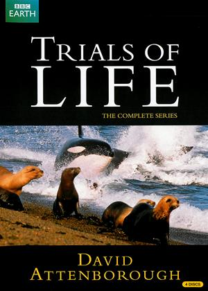 Rent David Attenborough: Trials of Life Online DVD Rental
