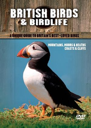 British Birds: Mountains Moors and Lakes Online DVD Rental