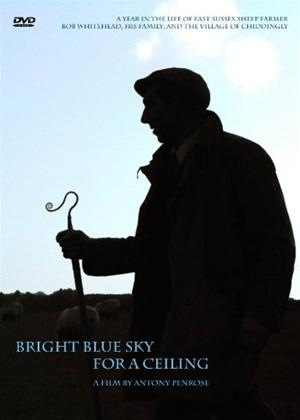 A Bright Blue Sky for a Ceiling Online DVD Rental