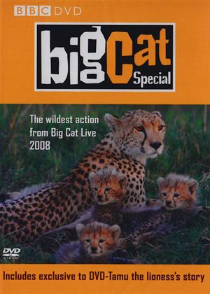 Rent Big Cat Diary: The Special Online DVD Rental