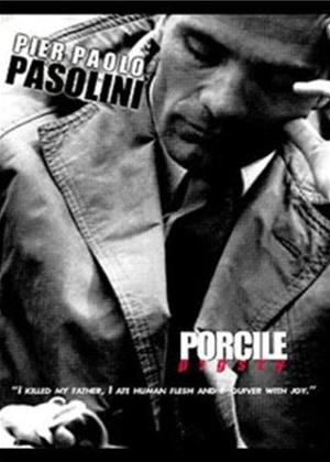 Pasolini: Vol.2: Pigsty Online DVD Rental