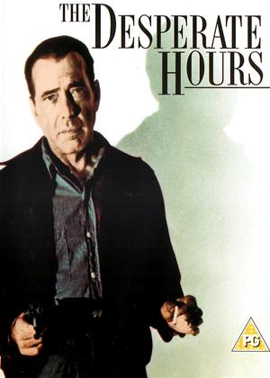 The Desperate Hours Online DVD Rental