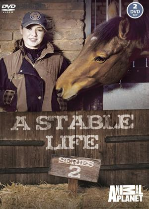 Rent A Stable Life: Series 2 Online DVD Rental