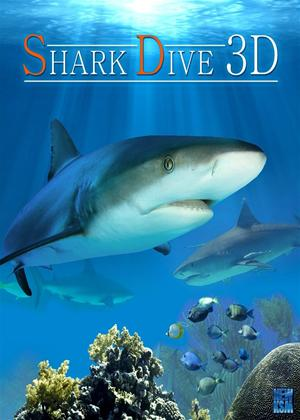 Shark Dive Online DVD Rental