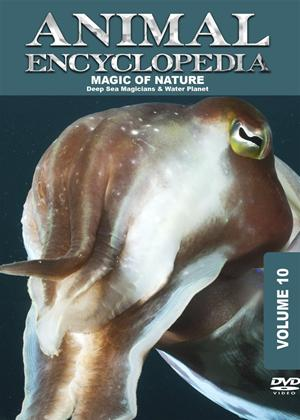 Rent Animal Encyclopedia: Vol.10: Deep Sea Magicians Online DVD Rental