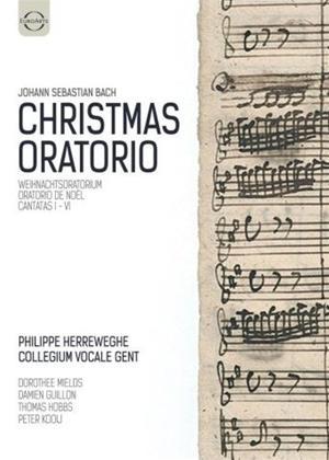 Rent Bach: Christmas Oratorio (Herreweghe) Online DVD Rental
