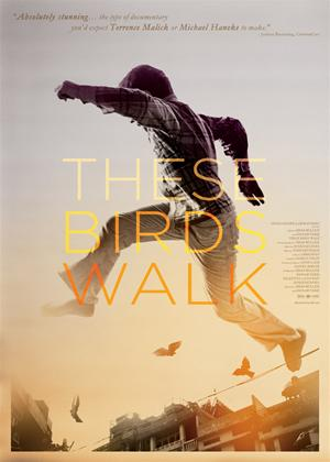 Rent These Birds Walk Online DVD Rental