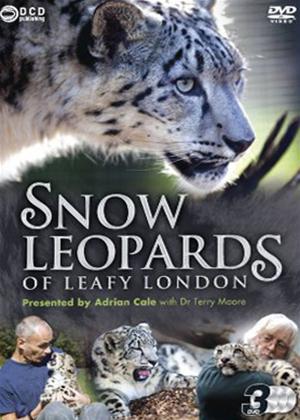 Snow Leopards of Leafy London Online DVD Rental