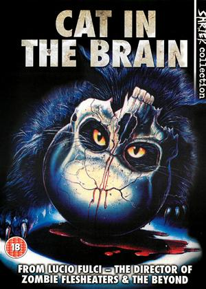 Rent Cat in the Brain (aka Un Gatto Nel Cvervello) Online DVD Rental