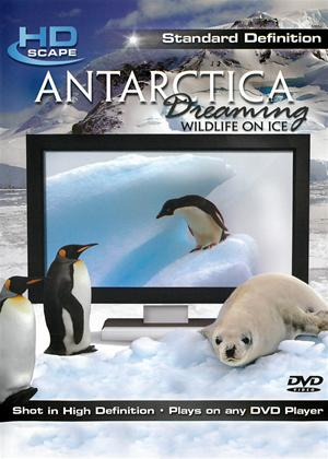 Antarctica Dreaming: Wildlife on Ice Online DVD Rental