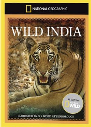 National Geographic: Wild India Online DVD Rental