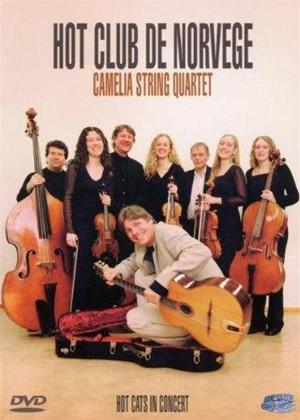 Hot Club De Norvege: Hot Cats in Concert: Camelia String Quartet Online DVD Rental