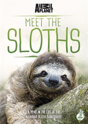 Rent Meet the Sloths Online DVD Rental