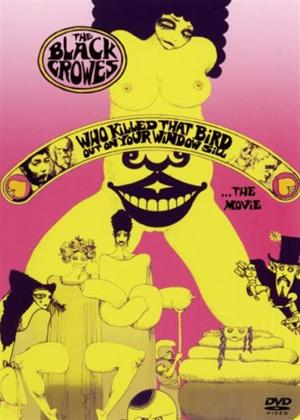 Rent Black Crowes: Who Killed That Bird Out on Your Window Sill Online DVD Rental