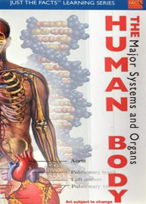 Rent Just the Facts: The Human Body: Major Systems and Organs Online DVD Rental