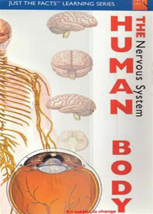 Just the Facts: The Human Body: Nervous System Online DVD Rental