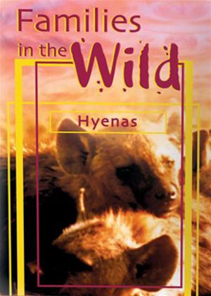 Just the Facts: Families in the Wild: Hyenas Online DVD Rental