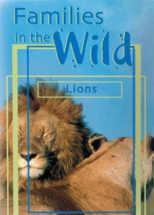 Just the Facts: Families in the Wild: Lions Online DVD Rental