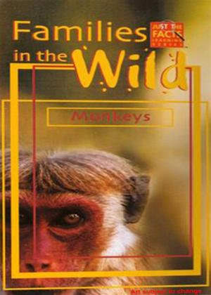 Rent Just the Facts: Families in the Wild: Monkeys Online DVD Rental