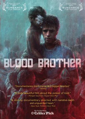 Rent Blood Brother Online DVD Rental