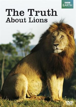 Lions: The Truth Online DVD Rental