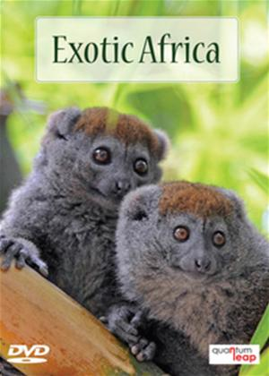 Exotic Africa Online DVD Rental