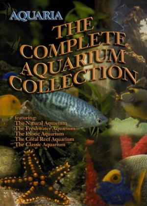 Rent Aquaria: The Complete Aquarium Collection Online DVD Rental