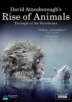 David Attenborough's: Rise of Animals: Triumph of the Vertebrates Online DVD Rental