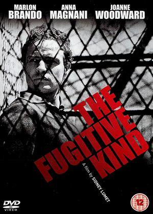 The Fugitive Kind Online DVD Rental