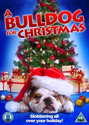 A Bulldog for Christmas Online DVD Rental