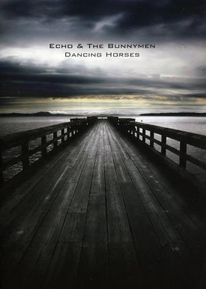 Rent Echo and the Bunnymen: Dancing Horses Online DVD Rental