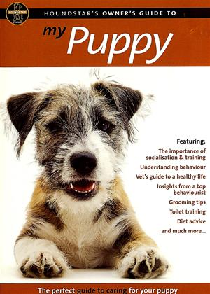 My Puppy Online DVD Rental