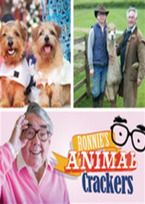 Ronnie's Animal Crackers Online DVD Rental