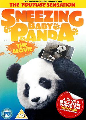 Sneezing Baby Panda: The Movie Online DVD Rental