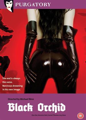 Black Orchid Online DVD Rental