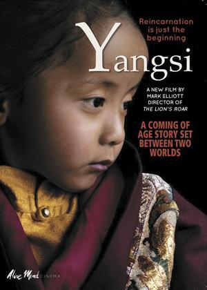 Rent Yangsi Online DVD Rental
