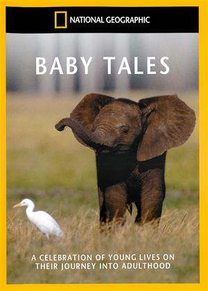 National Geographic: Baby Tales Online DVD Rental