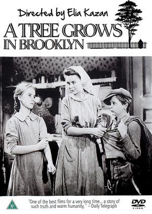 A Tree Grows in Brooklyn Online DVD Rental
