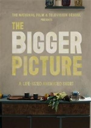 The Bigger Picture Online DVD Rental