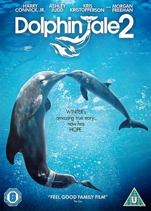 Rent Dolphin Tale 2 Online DVD Rental
