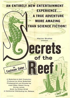 Rent Secrets of the Reef Online DVD Rental