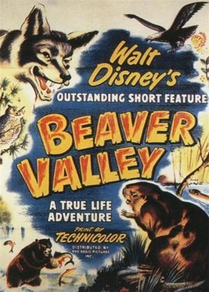 Rent Beaver Valley Online DVD Rental