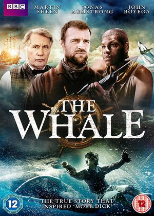 The Whale Online DVD Rental