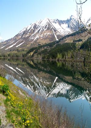 Rent Alaska Wilderness Lake Online DVD Rental
