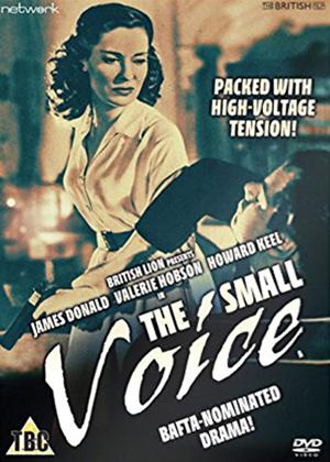The Small Voice Online DVD Rental