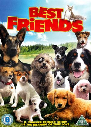 Best Friends Online DVD Rental